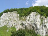 Dolina Prądnika - skały
