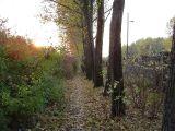 Stara ścieżka rowerowa